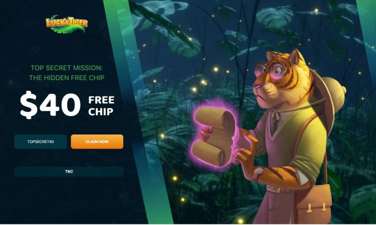 Lucky Tiger homepage image