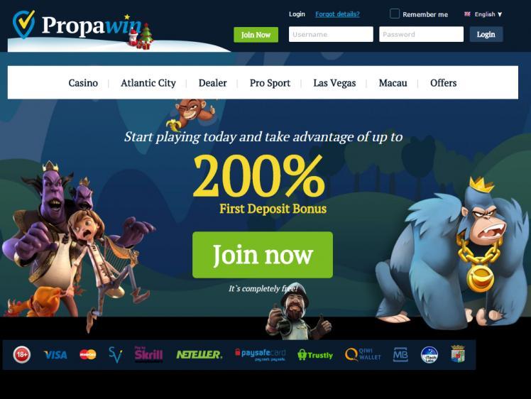 PropaWin homepage image