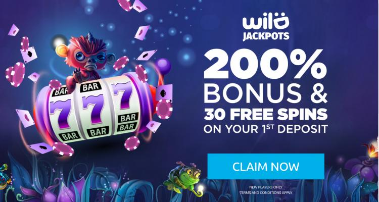 Wild Jackpots homepage image