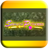 Samurai Princess Free Slots Demo