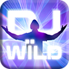 DJ Wild Slot Machine