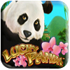 Lucky Panda Slot Machine
