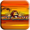 Wild Gambler Slot Machine