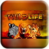 The Wild Life Slot Machine