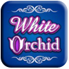 White Orchid Slot Machine