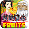 Ninja Fruits Free Slots Demo