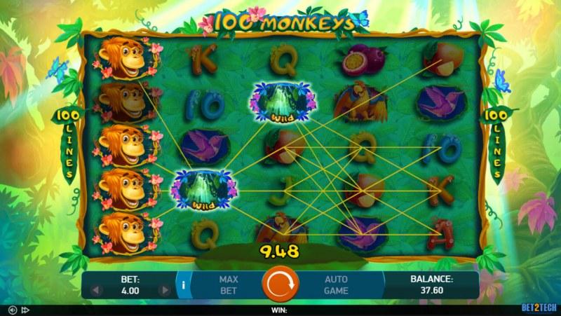 100 Monkeys :: Multiple winning paylines