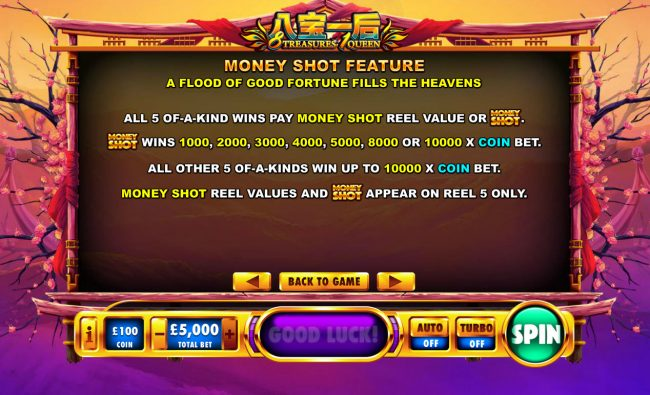 Money Shot Feature