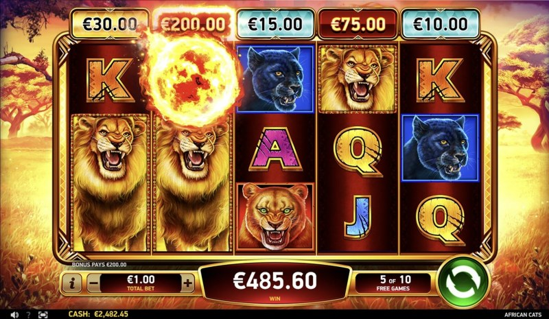 African Cats :: Free Spins Game Board