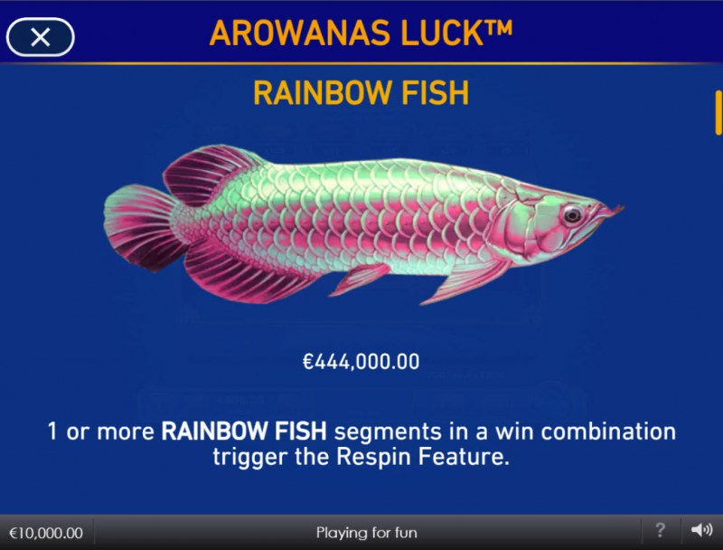Arowanas Luck :: Rainbow Fish