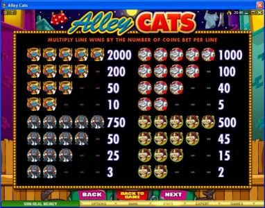 Casino Splendido featuring the Video Slots Alley Cats with a maximum payout of $50,000