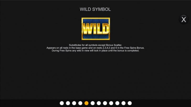 Big Bonus :: Wild Symbol Rules
