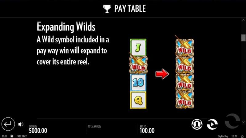 Big Fin Bay :: Expanding WIlds