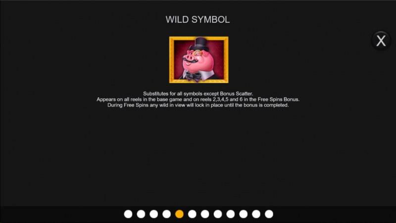 Big Piggy Bonus :: Wild Symbol Rules