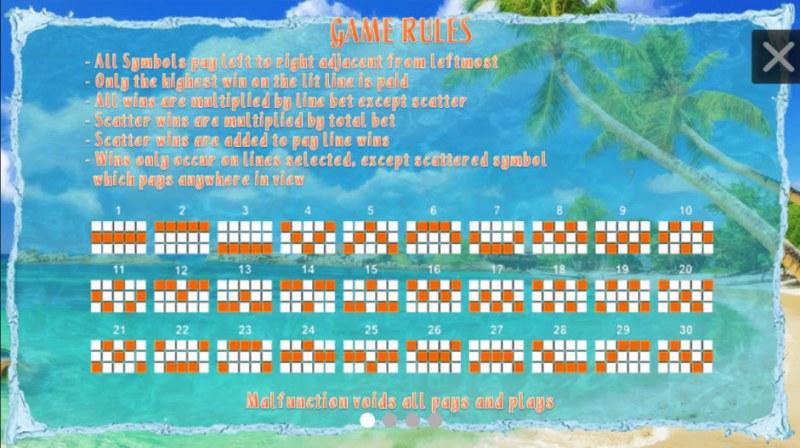 Bikini Chaser :: General Game Rules