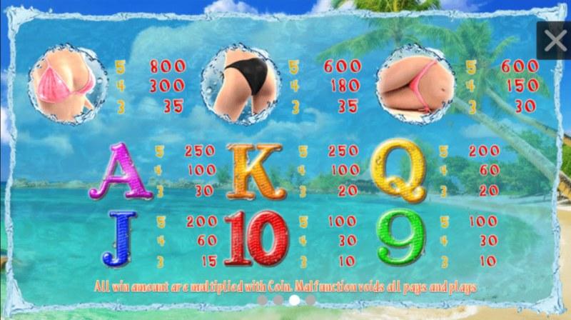 Bikini Chaser :: Paytable