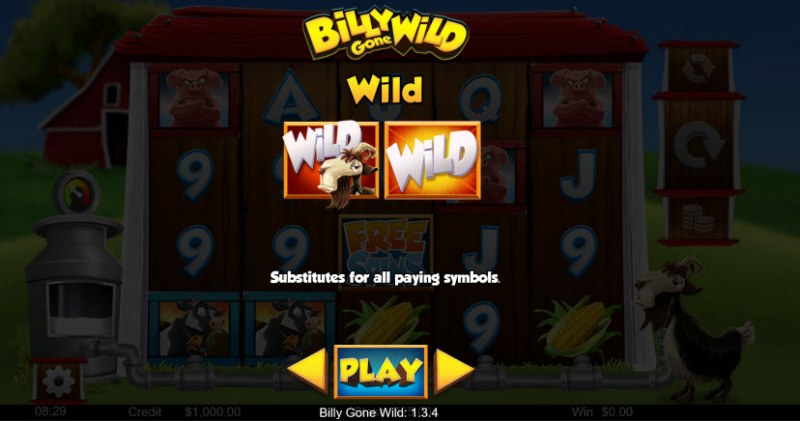 Billy Gone Wild :: Wild Symbols Rules