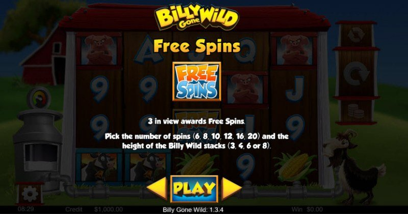 Billy Gone Wild :: Free Spins Rules