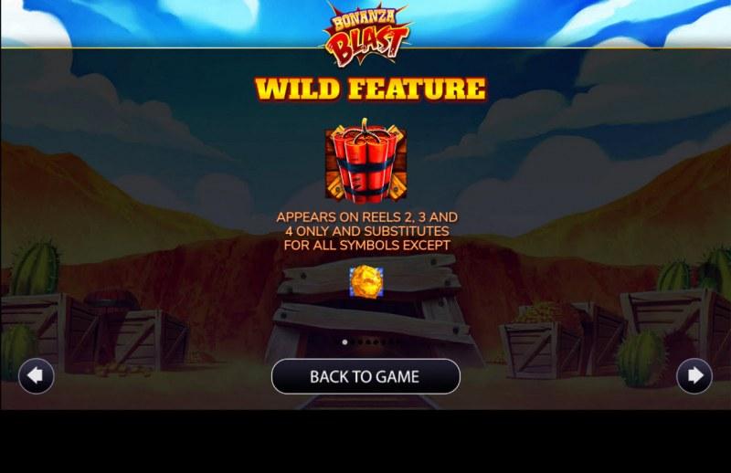 Bonanza Blast :: Wild Symbols Rules