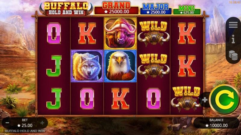 Buffalo Hold and Win :: Main Game Board