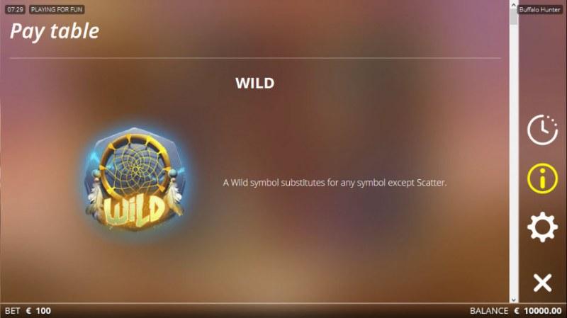 Buffalo Hunter :: Wild Symbols Rules