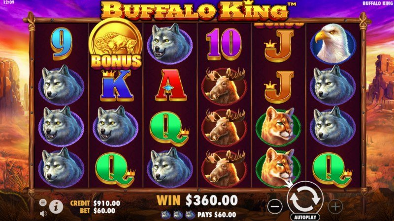 Buffalo King :: Three of a kind