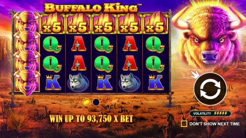 Buffalo King :: Introduction