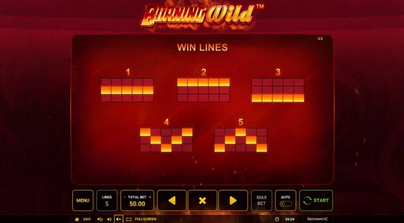 Burning Wild :: Paylines 1-5