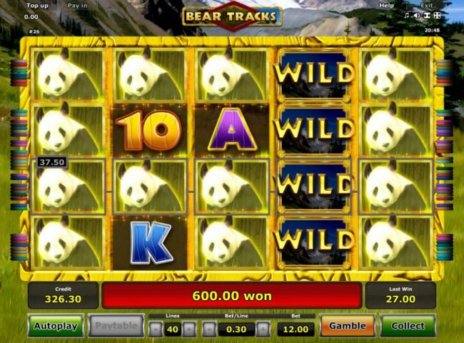 A 600.00 big win triggered by multiple winning paylines during the Free Spins feature.