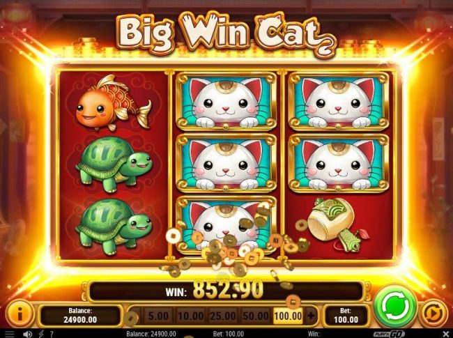 Multiple winning paylines leads to a big win payout