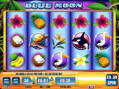 Blue Moon :: Main game board featuring five reels and thirty paylines