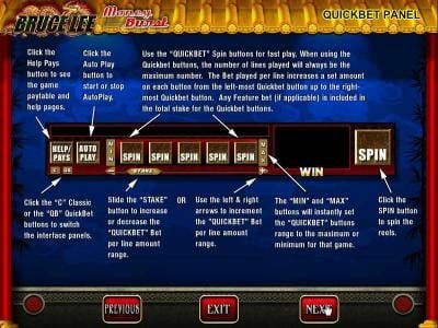 Bruce Lee :: Quickbet Panel layout and description