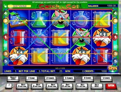Play slots at Wicked Bet: Wicked Bet featuring the Video Slots Catch the Cat with a maximum payout of $40,000