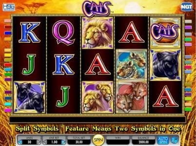 Cats :: main game board featuring five reels and thirty paylines