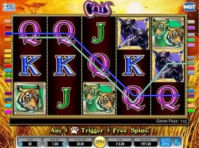 Cats :: five of a kind triggers 115 coin jackpot payout