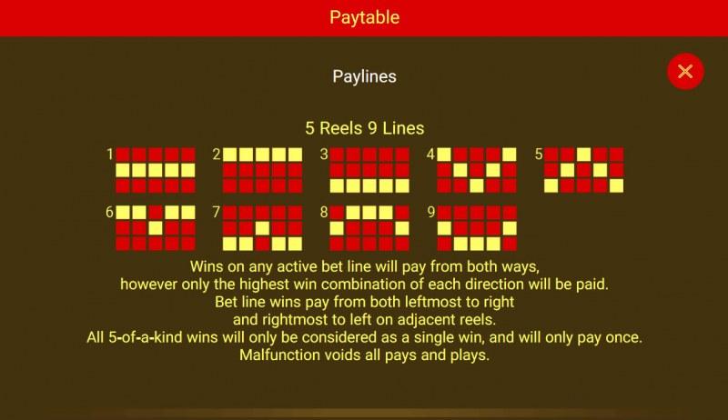 Cai Yuan Guang Jin :: Paylines 1-9