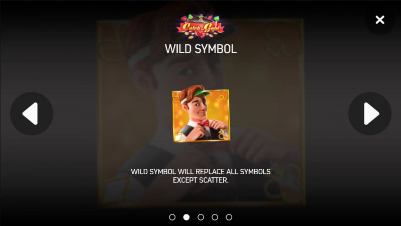 Catch the Gold :: Wild Symbols Rules