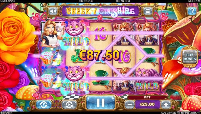 Cheeky Cheshire :: Multiple winning paylines