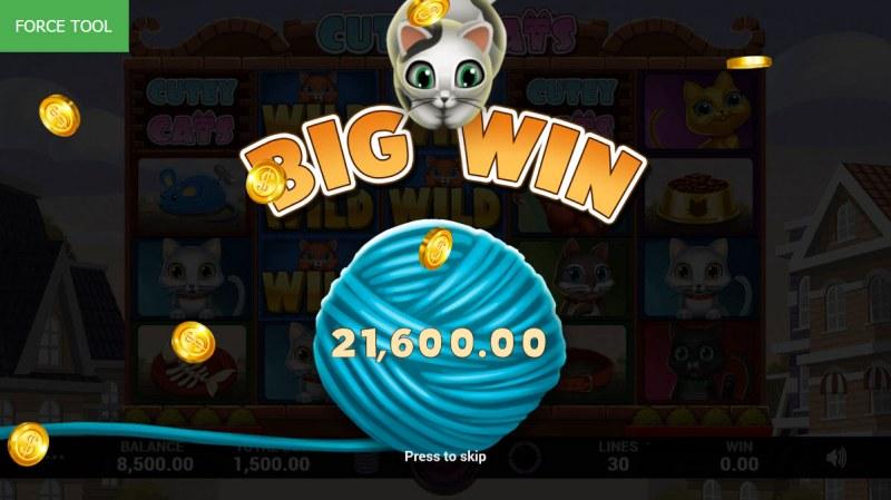 Cutey Cats :: Big Win
