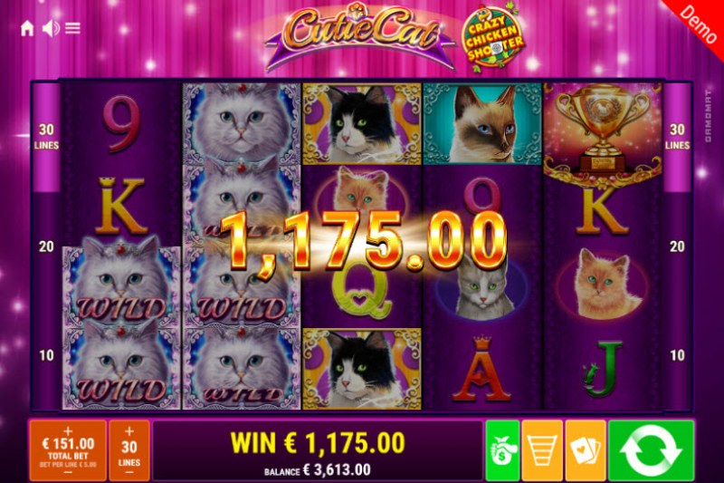 Cutie Cat Crazy Chicken Shooter :: Multiple winning combinations leads to a big win