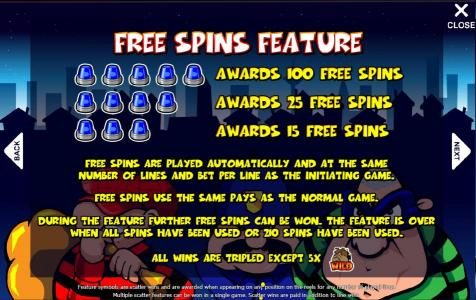 how to play free spins feature and paytable