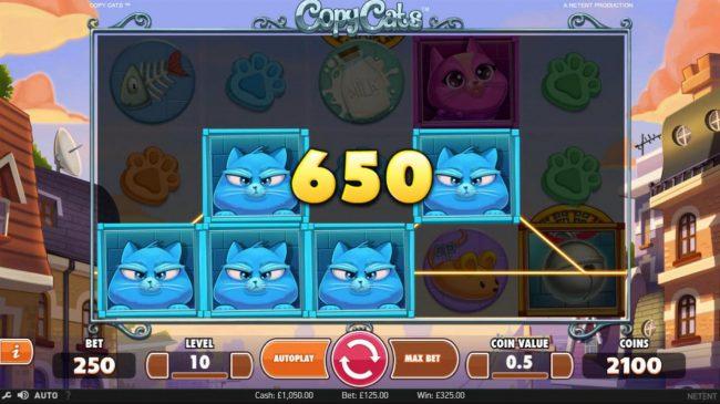 Copy Cats :: Blue cat symbols triggers a 650 coin payout.