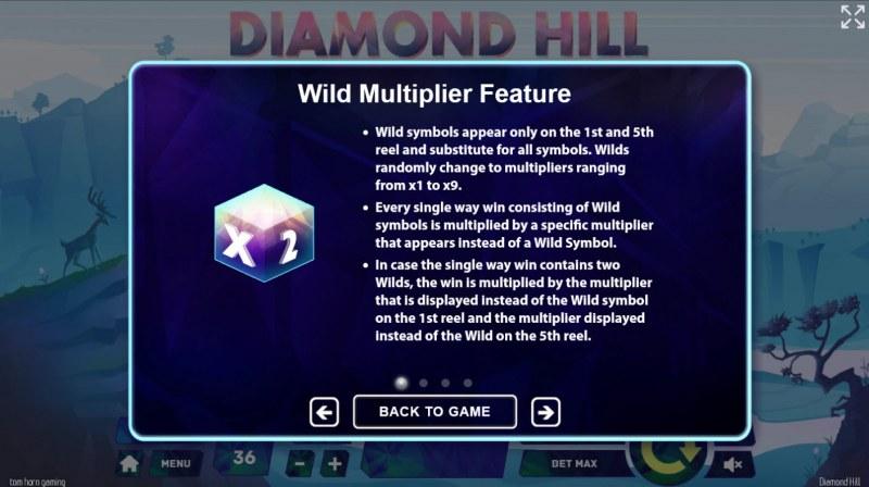 Diamond Hill :: Wild Multiplier Feature