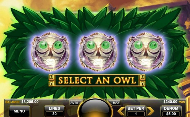 Select an owl