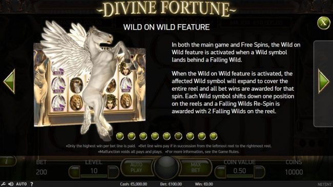 Wild on Wild Feature - In both the main game and Free Spins, the Wild on Wild feature is activated when a wild symbol lands behind a Falling Wild.