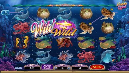 Dolphin Quest :: wild symbols triggers a modest jackpot