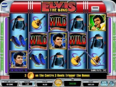 Elvis the King :: Multiline win triggers a 245 big win jackpot