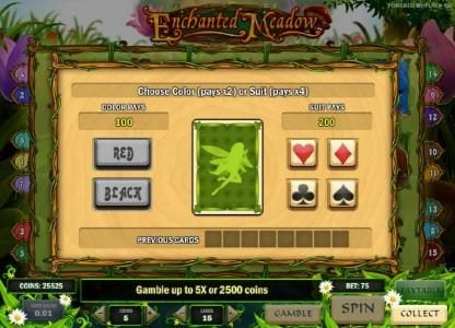 gamble feature game board - choose a color or suit for a chance to increase your winnings