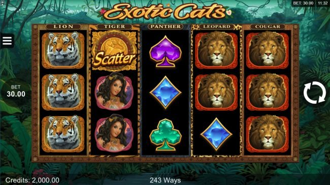 Lucky Nugget featuring the Video Slots Exotic Cats with a maximum payout of $106,000