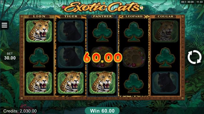 Play slots at Oshi: Oshi featuring the Video Slots Exotic Cats with a maximum payout of $106,000
